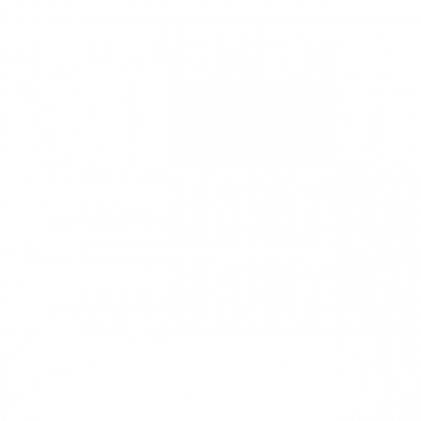 REESA-Acryl-Haftgrund weiß RAL 9010 weiß á 2,5 kg