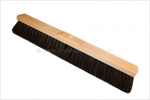 Arenga Broom