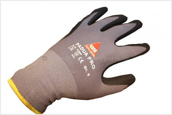 Handschuh PADUA PRO
