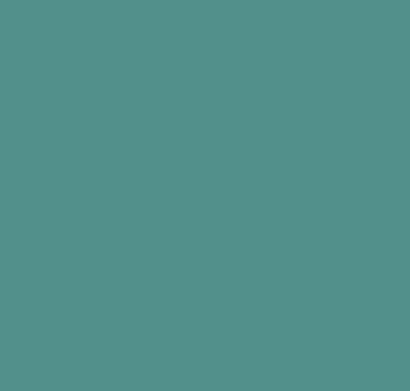 Reepoxan Universal-Lack 3 in 1 RAL 6033 á 5 ltr